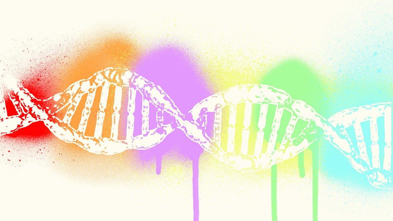 DNA-doppiaelica-genoma